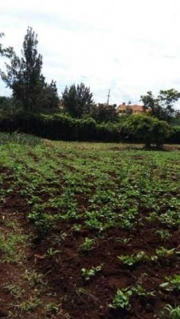 Kiserian Corner Baridi Near St Patricks School,2pcs of 1/8 plots